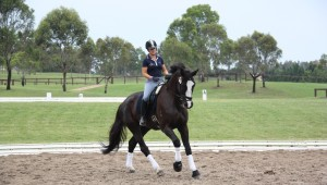 Tanase riding Di Burns, Mystic Recherche (S: Rotspon) at Sydney International Equestrian Centre